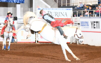 Riding or Wrecking:  It's the Cowboy Life